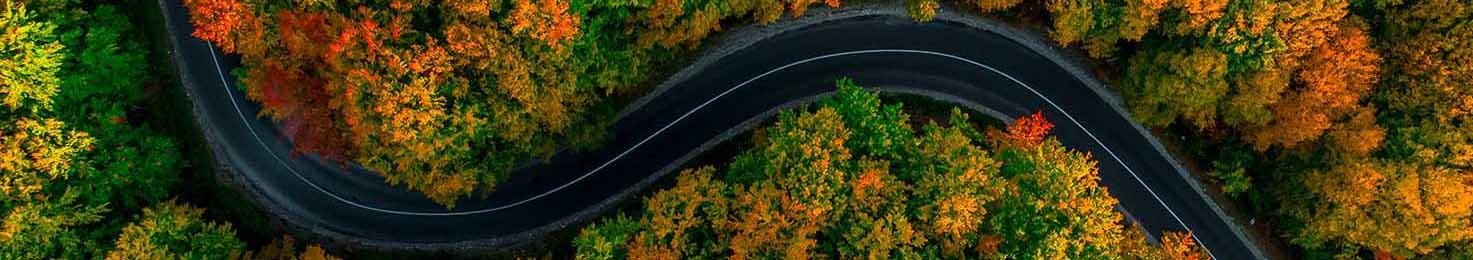 route en automne vu du ciel